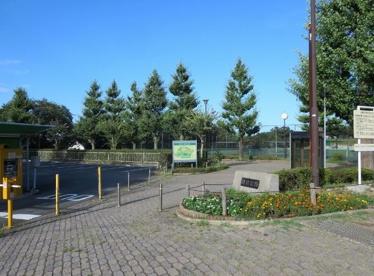 岡村公園の画像1