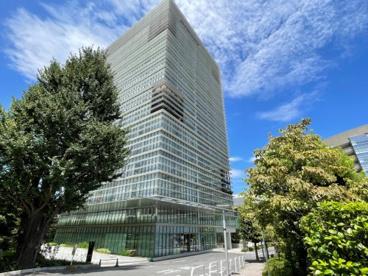 北里大学 薬学部の画像1