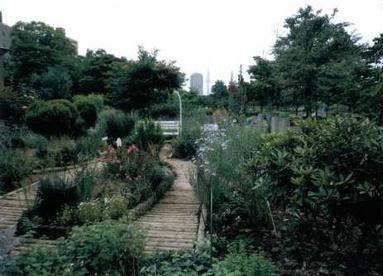 木場公園都市緑化植物園の画像2