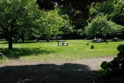 清澄公園の画像2