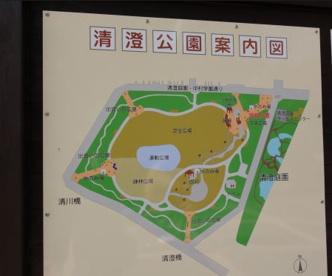 清澄公園の画像3