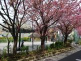 渋谷区立 本町氷川公園