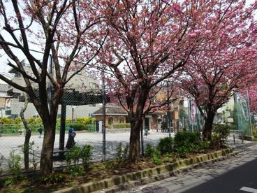 渋谷区立 本町氷川公園の画像1