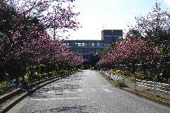 浦添工業高校の画像1