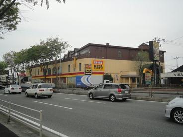 MEGAドン・キホーテ上鶴間店の画像1