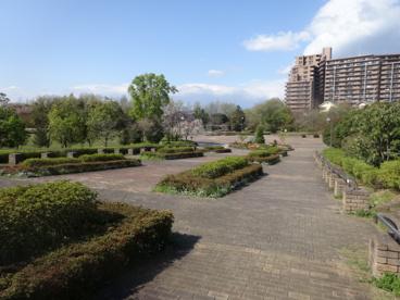 小山白山公園の画像1
