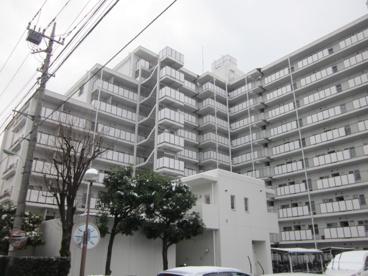 浦和パークファミリアA棟 の画像3