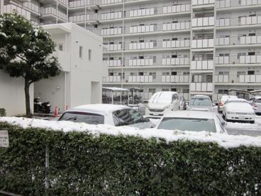 浦和パークファミリアA棟 の画像4