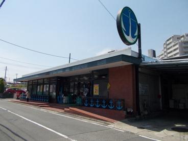 いかりスーパー 王子店の画像2