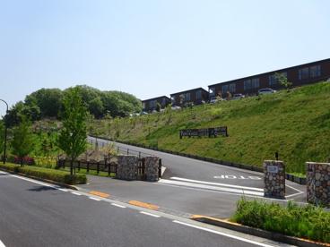 東京ゆりかご幼稚園の画像3
