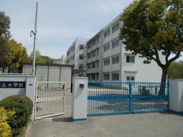 豊中市立 東泉丘小学校の画像1
