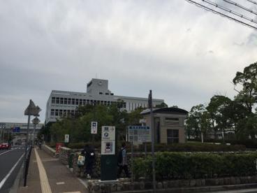 芦屋市役所の画像2