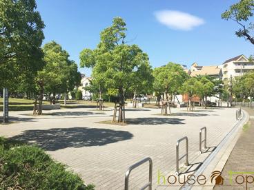 高須東公園さくらの広場の画像2