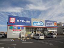 ウエルシア薬局 山武成東店