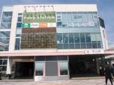 東急ストアフードステーション西小山店
