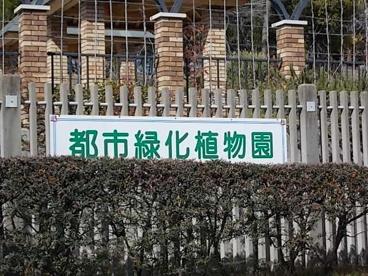 服部緑地都市緑化植物園の画像4