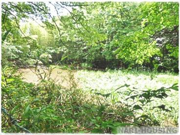赤坂池の画像1