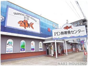 ピーデー熱帯魚センターの画像1