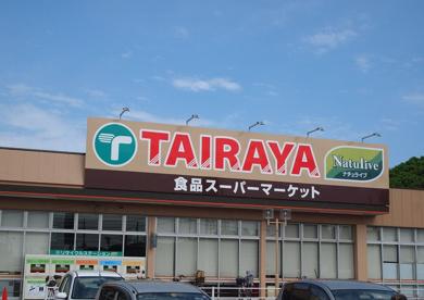 エコスTAIRAYA新取手店の画像1