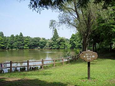 柏ビレジ水辺公園の画像1