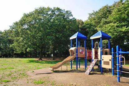 柏ビレジ近隣公園の画像1
