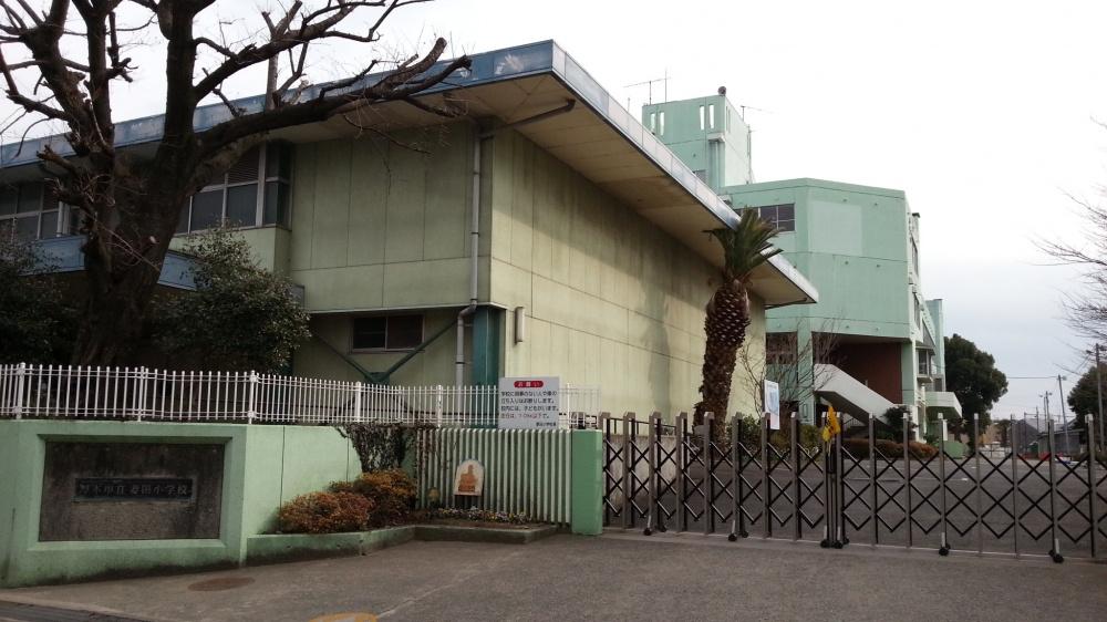 【厚木市】妻田小学校の画像
