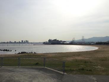 芦屋市総合公園の画像2