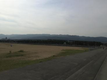 芦屋市総合公園の画像4