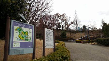 【厚木市】防災の丘公園の画像