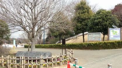 【厚木市】防災の丘公園の画像2