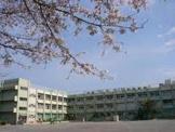 木根川小学校