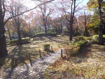 隅田公園の画像2
