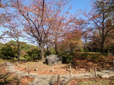 隅田公園の画像3