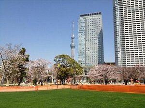 錦糸公園の画像1