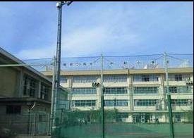 中和小学校の画像1