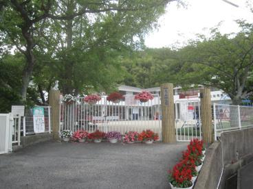 学校法人 光が丘幼稚園の画像1