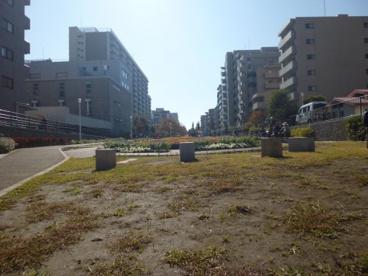 大横川親水公園の画像2