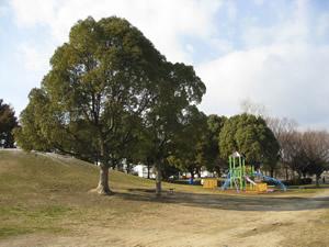 金岡公園の画像1