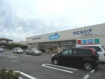 ウェルシア 佐知川店