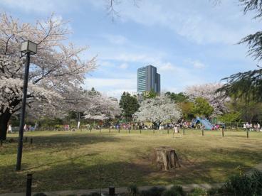 菅刈公園の画像1