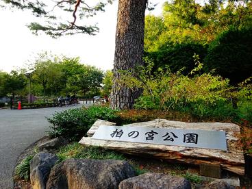 区立柏の宮公園の画像1