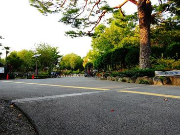 区立柏の宮公園の画像2