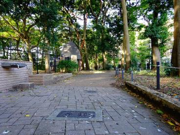 区立三井の森公園の画像2
