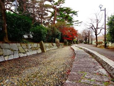 藤和緑地の画像1