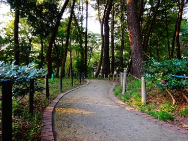 塚山公園 の画像2