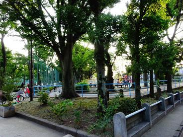 羽根木こども園の画像1