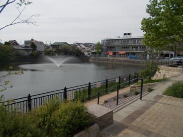 榎阪大池公園の画像3