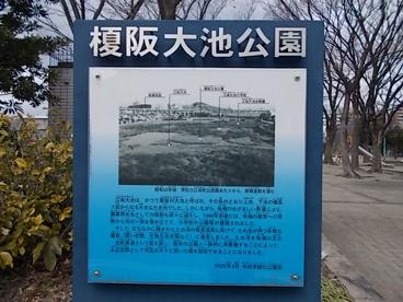 榎阪大池公園の画像4
