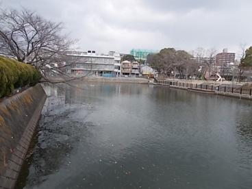 江坂大池の画像1
