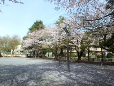 宮前平公園の画像2